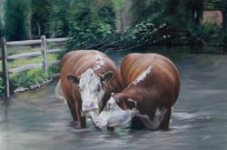"""Cobbleclose Cows"""