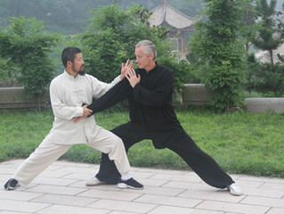 Master Chen Zhonghua Practical Method Workshop