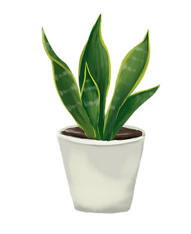 —Pngtree—green_leaves_white_flower_pot_3