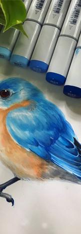 Blue Bird - COPIC.jpg