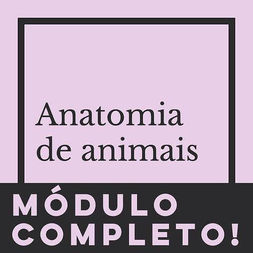 MÓDULO COMPLETO - ANATOMIA DE ANIMAIS
