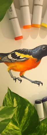 Yellow Bird - COPIC.jpg