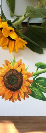 Sunflower - COPIC.jpg