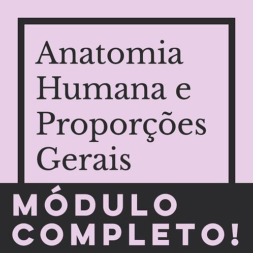 MÓDULO COMPLETO - ANATOMIA HUMANA & PROPORÇÕES
