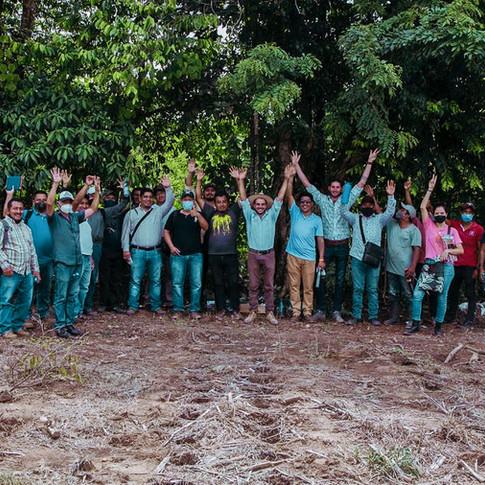 Promouvoir le développement des forêts comestibles et l'amélioration de l'environnement du café au Mexique