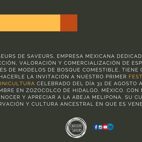 FESTIVAL DE MELIPONICULTURA