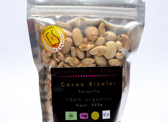 Cacao Theobroma Bicolor (Pataxte)