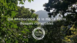 DIA INTERNACIONAL DE LA MADRE TIERRA