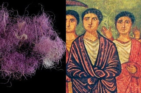 Descubren en el Sur de Israel verdadero Tejido de  Púrpura Real llevado por el Rey Salomón