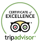 Trip Adviser Cert Excellence undated.png