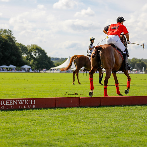 EO CT at Greenwich Polo
