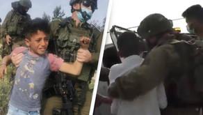 Israeli soldiers arrest Palestinian kids for 'picking wild vegetables'