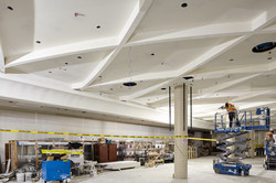 Specialty Ceiling Work