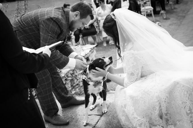 Cornelius Wedding-4.jpg