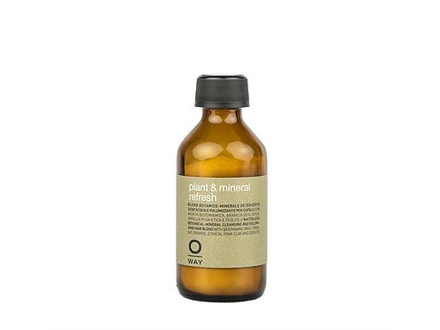 Plant & Mineral refresh (dry shampoo)