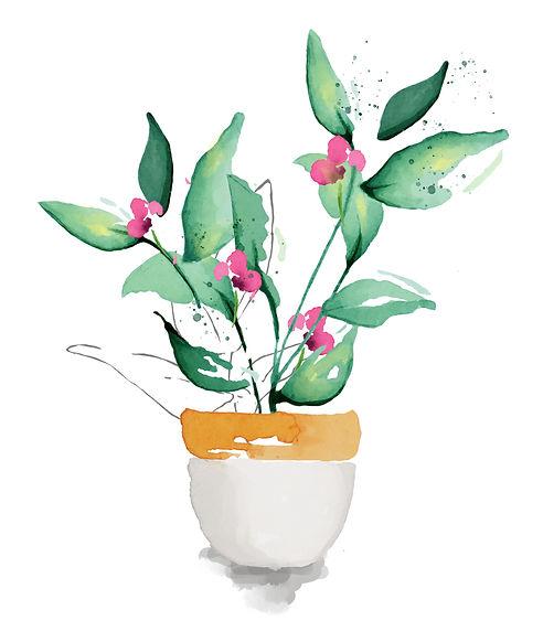 pink plant.jpg