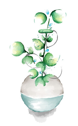 blue vase plant.jpg