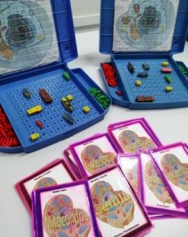 Projeto de extensão utiliza jogos lúdicos como instrumentos de ensino de Ciências e Biologia   UFES