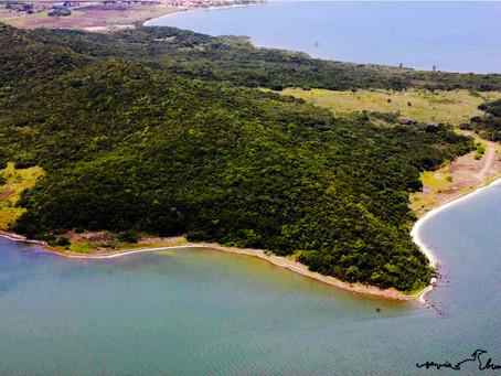 Núcleo de Pesquisas da UFF atua no desenvolvimento sustentável de áreas de preservação ambiental