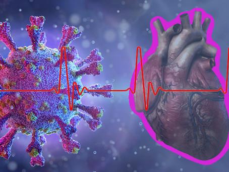 USP | Estudo relaciona vírus da covid-19 no coração a síndrome rara que afeta crianças