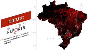 Unemat   Queimadas no Brasil impedirão o país de honrar o Acordo Climático de Paris, conclui artigo