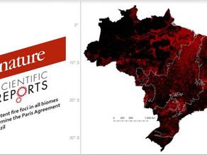 Unemat | Queimadas no Brasil impedirão o país de honrar o Acordo Climático de Paris, conclui artigo