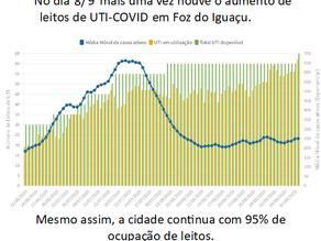UNILA | Pesquisadores alertam para alta ocupação de UTIs em Foz do Iguaçu