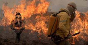 UFMT | Exposição artística traz queimadas como tema principal