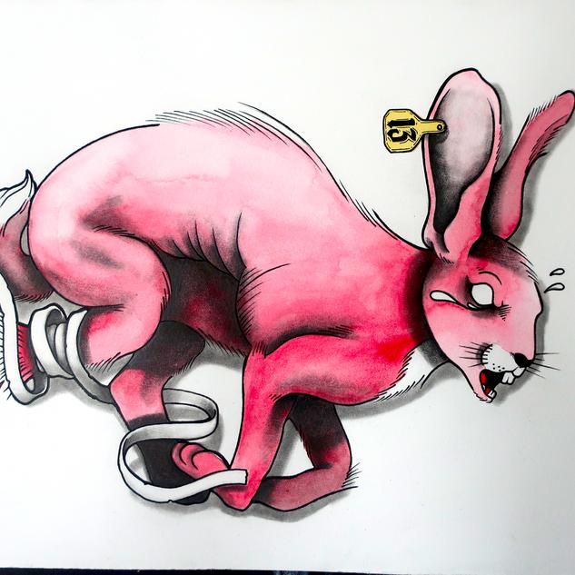 unlucky Rabbit