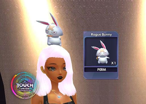 rogue bunny.jpg