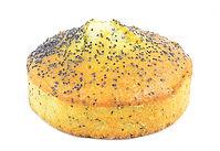 Cake citron pavot - Fond Blanc.jpg