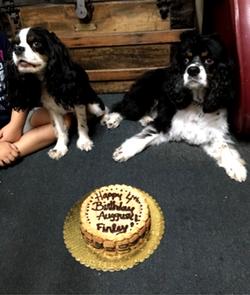 August & Finley's Birthday