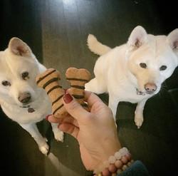 Akitas & PB Crunch Biscuits