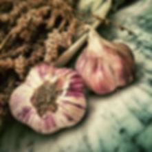 garlic-139659.jpg