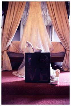 The DRESS Photos by  Simeon Thaw copyright 2015 (1).jpg