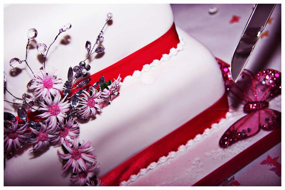 CAKE photos by Simeon Thaw copyright  2014 (58).jpg