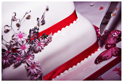 CAKE photos by Simeon Thaw copyright  2014 (58).jpg