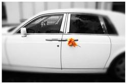 CAR photos by Simeon Thaw copyright 2014 (26).jpg