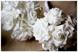 FLOWERS photos by Simeon Thaw copyright 2014 (5).jpg