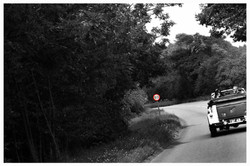 CAR photos by Simeon Thaw copyright 2014.jpg