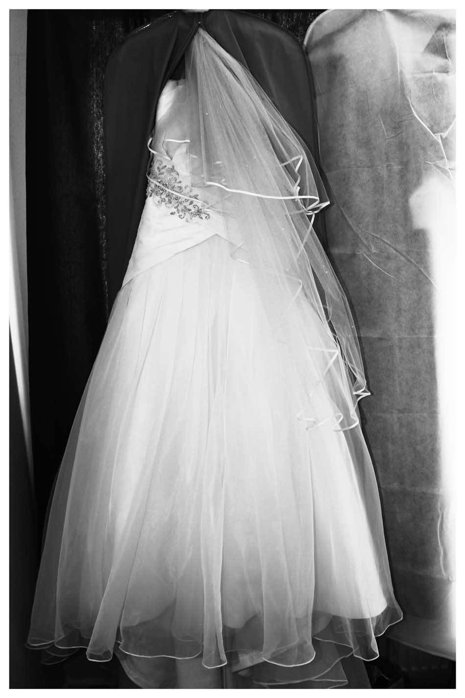 The DRESS Photos by  Simeon Thaw copyright 2015 (100).jpg