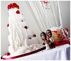CAKE photos by Simeon Thaw copyright  2014 (59).jpg