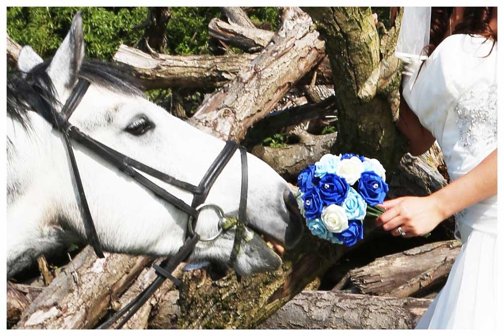 FLOWERS photos by Simeon Thaw copyright 2014 (21).jpg