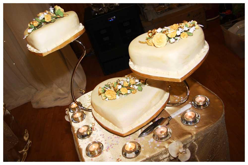 CAKE photos by Simeon Thaw copyright  2014 (9).jpg