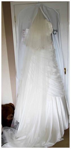 The DRESS Photos by  Simeon Thaw copyright 2015 (94).jpg