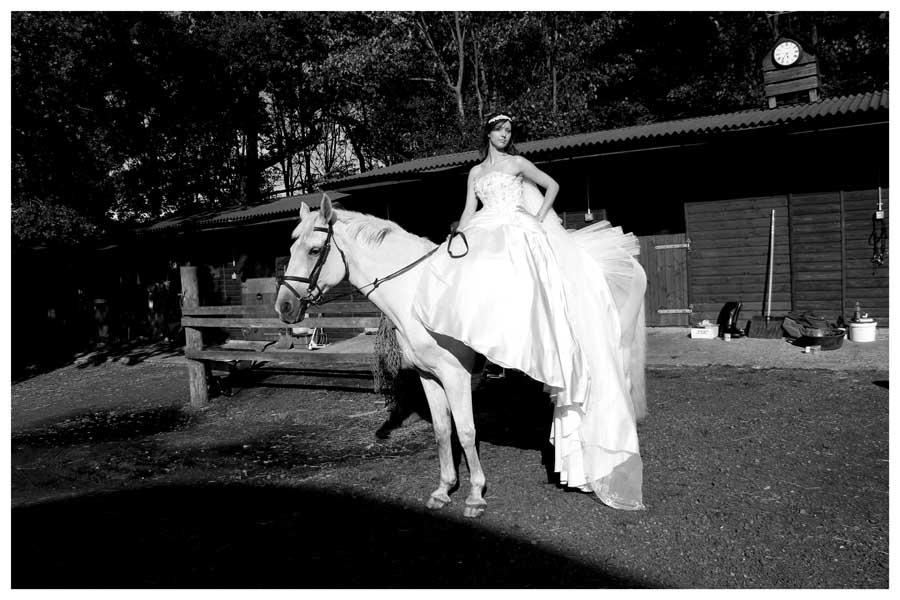 The Animals Photos by Simeon Thaw Copyright 2014 (17).JPG