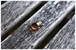 THE RINGS Photo Simeon Thaw Copyright  2015 (19).jpg