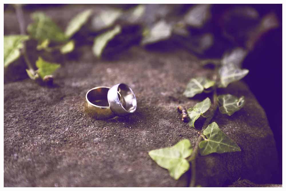 THE RINGS Photo Simeon Thaw Copyright  2015 (17).jpg