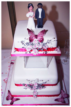 CAKE photos by Simeon Thaw copyright  2014 (57).jpg