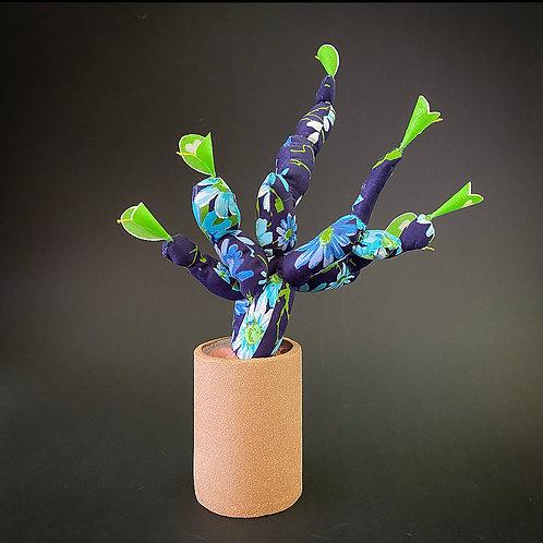 Blue Flowering Cactus